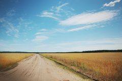 Road to heaven. Road in a middle of a wheat field Stock Photo