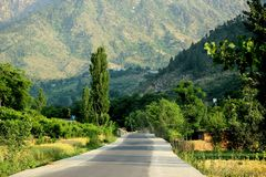 Road to heaven. Green lush road of swat Royalty Free Stock Photography