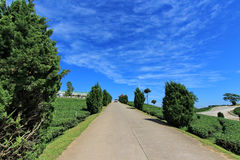 Road to the hill with blue sky background Royalty Free Stock Photography