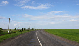 Road to horizon. Countryside road among fields to horizon Royalty Free Stock Images