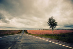 Road to horizon Royalty Free Stock Photos
