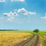 Road to horizon and blue sky Stock Images