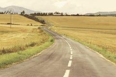 Road to the horizon. Road to the horizon, through the fields Stock Image