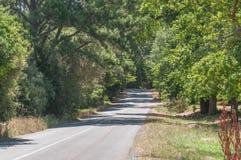 Road to the Jonkershoek Nature Reserve near Stellenbosch Royalty Free Stock Image