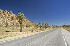 Road to Joshua Tree Royalty Free Stock Images