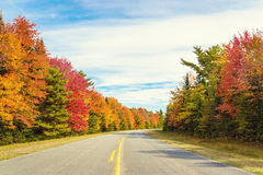Road to Keji in fall Stock Images