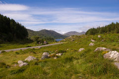 The road to killarney. Road to killarney national park in Ireland Royalty Free Stock Photos