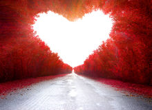 Road to love. Trees in the shape of a heart Stock Photo