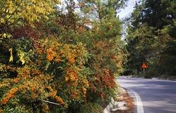 Road to Macedonia in Evzonoi. Greece.  Stock Photo