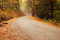 Road in to the mist. Rural road in the fall Stock Photo