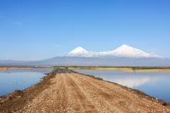 Road to Mount Ararat lakes through. Flock of birds on the road to Mount Ararat Stock Photos
