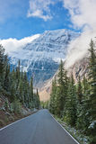 Road to Mount Cavell. Alberta, Canada royalty free stock image
