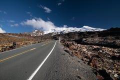 Road to Mount Ruapehu Royalty Free Stock Photo