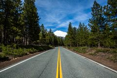 Road to Mount Shasta`s trailheads in northern California stock photo