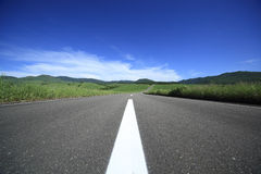 Road to mountain. Royalty Free Stock Images