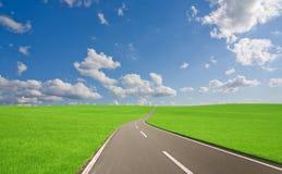 Road to mountain. Stock Image