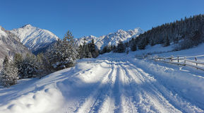 Road to the mountain. In winter Stock Images