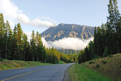 Road to mountains stock photography