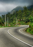 Road to the mountains. Fog above forest Royalty Free Stock Image