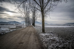 Road to the mountains. Landscape with road and trees, snow, dark clouds, mountains in the background Stock Images