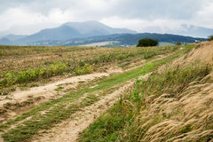 Road to mountains, Tatras Royalty Free Stock Photography