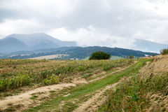 Road to mountains, Tatras Royalty Free Stock Images