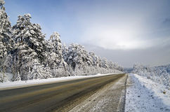 Road to  Mountains in winter Royalty Free Stock Photography