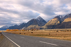 Road to Mt. Cook,South Island New Zealand. Royalty Free Stock Photo