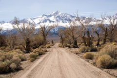 Road to Mt. Whitney Stock Photography
