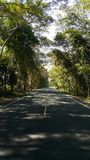 Road. To my home Stock Photography