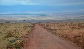 Road to Ngorongoro National Park Royalty Free Stock Photos