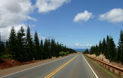 Road to northshore Stock Photography