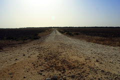 The Road to Nowhere. Dirt road heading to who knows where Royalty Free Stock Photography