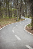 Road to nowhere. Curved winding road to nowhere in the forest Royalty Free Stock Image