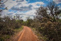 Road to nowhere. Hot country road leading to no destination Royalty Free Stock Photography