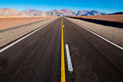 Road to nowhere. New straight road in the desert Stock Images
