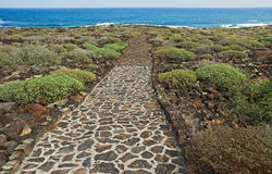 Road to ocean. Volcanic road  to ocean, Lanzarote, Canary Islands Royalty Free Stock Photo