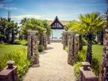The road to the ocean of stone with Palm trees on the sides in Thailand royalty free stock photos