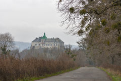 Road to Olesko castle museum in Ukraine Royalty Free Stock Images