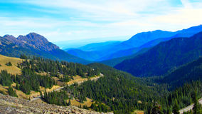 Road to Olympic National Park. Autumn Stock Images