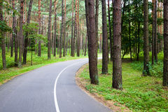 Road to park Stock Image