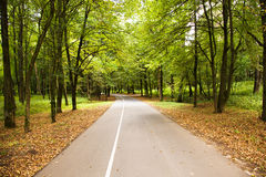Road to park Royalty Free Stock Image
