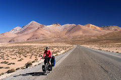 On the road to Park Lauca. Woman cycling on the empty road to Parc National Lauca on the border between Chile and Argentina Stock Photography
