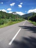 Road to peak of Velky Rozsutec royalty free stock photos
