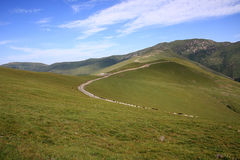Road to the peak Wutai MT. Royalty Free Stock Images