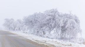 Road to Pirkuli Azerbaijan Stock Image