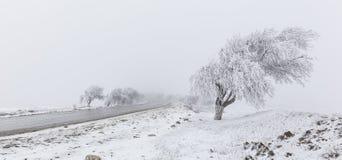 Road to Pirkuli Azerbaijan Royalty Free Stock Photography