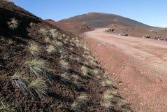 Road to Piton de la Fournaise volcano on La Reunion Stock Images