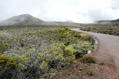 Road to Piton de la Fournaise volcano on La Reunion Stock Images