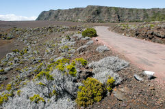 Road to Piton de la Fournaise volcano on La Reunion Royalty Free Stock Photos